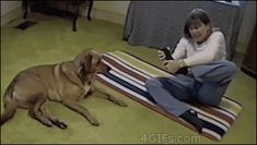 Very funny video short of a dog doing what a woman practicing yoga can't do.