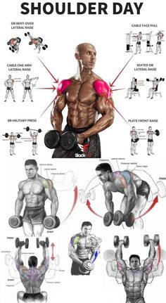 🎯TUTORIAL SHOULDER DAY | GUIDE - weighteasyloss.com - Fitness Lifestyle | Fitness and Bodybuilding Review Actuality