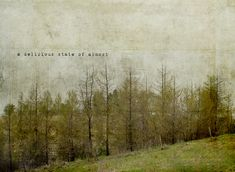a delicious state of almost by jamie heiden, via Flickr