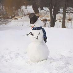 En attendant que la neige arrive, voici quelques idées de bonhommes de neige originaux à réaliser | Buzzly