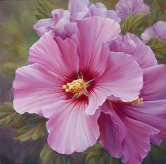 Marianne Broome — Rose Of Sharon (720x715)