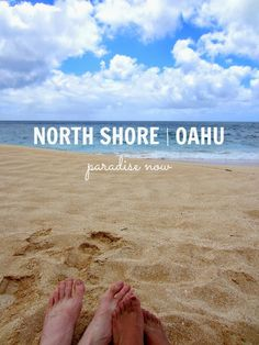 Things to Do in Oahu: North Shore | Club Narwhal