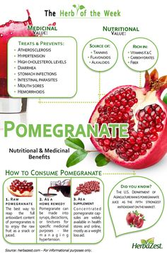 HerbaZest: Pomegranate Infographic! Read more about the incredible health benefits of exotic Pomegranate. Tags: #pomegranate #health #benefits #antioxidants #infographics #fruit #superfood