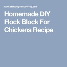 Homemade DIY Flock Block For Chickens Recipe