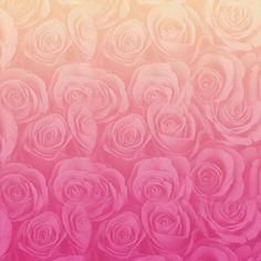 Flowers pink love
