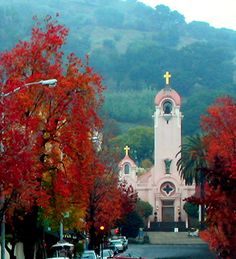 san rafael ca | San Rafael, CA : san rafael city photo, picture, image (California) at ...