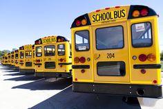 Porque é que os autocarros da escola são amarelos? http://palavrasdoabismo.blogspot.pt/2016/09/as-coisas-que-se-aprendem-22-porque-e.html #curiosidades #escola