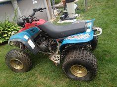 Yamaha warrior 350