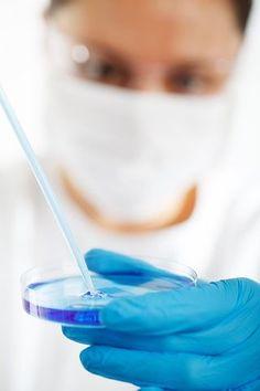 Biotech: Roche buys InterMune for $8.3 Billion