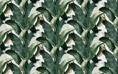 made by lemon behang mural botany jungle WPLC0023
