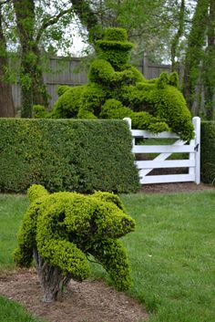 Let the Tide Pull Your Dreams Ashore: Ladew Topiary Gardens II