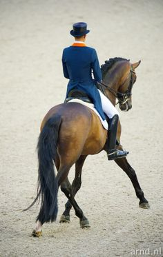 "CDI-W Amsterdam Hans Peter Mindehoud and ""Glock's Romanov""  Glock Horse…"