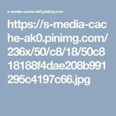 https://s-media-cache-ak0.pinimg.com/236x/50/c8/18/50c818188f4dae208b991295c4197c66.jpg