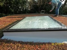 Fixed Flat Rooflights - High Quality, Low Maintenance Sedum Roof, Man Shed, Roof Light, Noise Reduction, Conservatory, Skylights, Garage Ideas, Painters, Cottages
