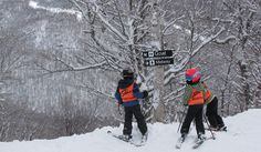 So do you know The Code?   7 Point Skiers Responsibility Code...