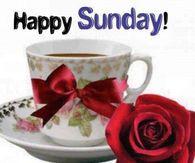 Happy Sunday! Good Morning