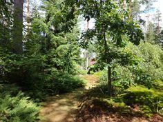 Arboretum Kiikala