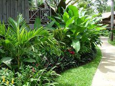 Zonsondergang in de palmen, Negril - Tropical Garden Front Garden Landscape, Lawn And Landscape, Landscape Plans, Tropical Garden Design, Tropical Backyard, Tropical Landscaping, Front Yard Landscaping, Small Tropical Gardens, Small Gardens