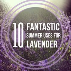 Lavender essential oil Summer Uses. Get 10% off at Sparknaturals.com/?id=14 with coupon code PATTI