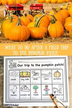 Pumpkin Patch Field Trip Free Printable