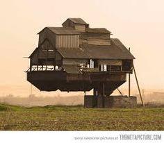 funny house - Hľadať Googlom