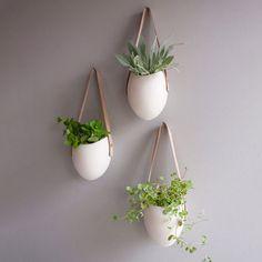 An Indoor Garden: Planters, Herb Keepers, & More