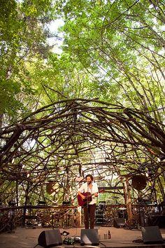 (Solo), Pickathon 2014 Destroyer on the Woods Stage, Pickathon 2014 Outdoor Stage, Outdoor Venues, Outdoor Theater, Stage Design, Event Design, Land Art, Balloon Decorations, Landscape Architecture, Botanical Gardens
