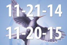 pics of the mocking jay | Mockingjay Part 1 Mockingjay Part 2 Movie Release Date ; eek so excited