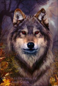 Anatolian jigsaw puzzle wolf bente schlick 500 pcs #3547