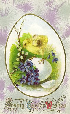 Chick and lilacs. I <3 anything with lilacs, forget-me-nots, and violets on it. Too sweet!  For scrapbooking, altered art, gift tags, framing, cards. Pretty!  Vintage Easter Postcard by Suzee Que, via Flickr