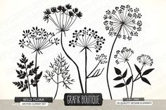 Wild Herbs Flowers silhouette vector by GrafikBoutique on @creativemarket