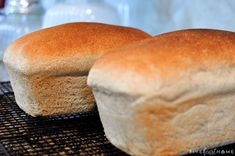 The Very BEST Whole Wheat Bread is the softest, moistest, fluffiest, freshest-staying, homemade, 100% whole wheat bread you've ever tried! | FiveHeartHome.com Best Whole Wheat Bread, Whole Wheat Sourdough, Whole Wheat Flour, Wheat Bread Recipe, Bread Recipes, Wheat Gluten, Pan Bread, Dry Yeast, How To Make Bread