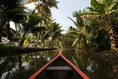 The Picturesque Kerala Backwaters and How to Best Visit Them