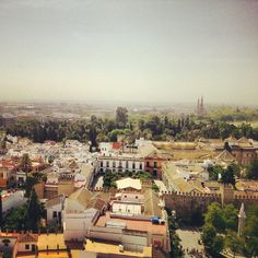 #Jardines #Alcázar #Sevilla