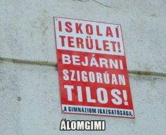 Álomgimi Funny Jokes, Hilarious, Some Jokes, Bad Memes, Me Too Meme, Just For Laughs, Funny Moments, Puns, True Stories