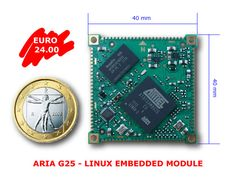 Another inexpensive Linux ARM board, 24 euros, $31.36 (as of Feb 26 2013)