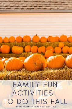 Fun Fall Activities that you'll want to try with the family! From fall bucket lists to seasonal autumn gardening – you'll love this list! #fall #family #activities Fun Fall Activities, Family Activities, Vegan Kitchen, Kitchen Recipes, Farm Lifestyle, Fall Family, Autumn Garden, Bucket Lists, Healthy Kids