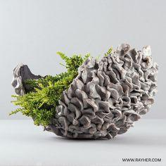 Pflanzschale aus Rayher Kreativ-Knetbeton