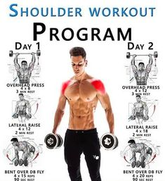 SHOULDER WORKOUT PROGRAM GUIDE ✅ Your Shoulder Muscles Ok, so we can't start to build up the muscles in your shoulders without knowing what muscles make up your shoulders Put simply, the shoulder is made up of two groups of muscles extrinsic mu - # Gym Workout Chart, Gym Workout Tips, Dumbbell Workout, Workout Videos, Workout Diet, Fitness Workouts, Weight Training Workouts, Fitness Tips, Health Fitness