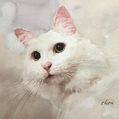 Watercolor painting of a cutie cat #watercolorpainting of a #cat on #watercolorpaper by Yong Chen #yongchen #watercolor #instadaily #instaart #instaartist #sketching #illustration video lesson of this painting is coming up on YouTube soon.