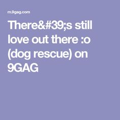 There's still love out there :o (dog rescue) on 9GAG