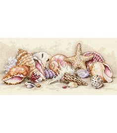 Shop for Petite Seashell Treasures Counted Cross Stitch Kit. Get free delivery On EVERYTHING* Overstock - Your Online Sewing & Needlework Shop! Cross Stitch Sea, Cross Stitch Charts, Counted Cross Stitch Patterns, Cross Stitch Designs, Cross Stitch Embroidery, Cross Stitching, Sea Shells, Sewing Crafts, Cute Kittens