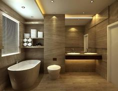 Toilet and Bath for small space