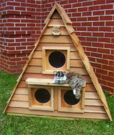 Sharp-looking Cat Cottage Triplex is a unique wooden cat house for an outdoor kitty hangout. You know your cat has a safe haven to curl up in inclement weather. Three separate compartments Can comfortably house three to six cats,. Wooden Cat House, Cat House Diy, House Dog, Outdoor Cat Shelter, Outdoor Cats, Modern Dog Houses, Cat Houses, Heated Cat House, Outside Cat House