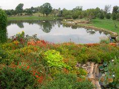 Overland Park Arboretum- almost the exact location where Luke proposed!