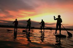 Adventure Activities Scotland   St Andrews Watersports   Gift Vouchers   Land Yachting Experiences in St Andrews, Scotland