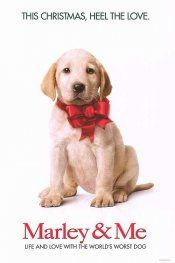 Marley & Me - best movie about the life of a dog since Old Yeller.