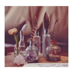 w o o d w i t c h featuring polyvore backgrounds photos pictures potions harry potter