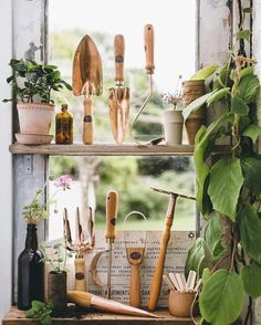 gardening tools in greenhouse window via @thefuturekept on instagram. / sfgirlbybay