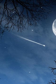 Take the feeling of wonder and magic that accompanies a falling star with you everywhere you go.